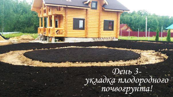 Проект укладки газона