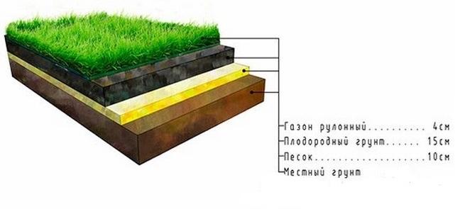Рулонные газоны в Москве и Московской области от производителя